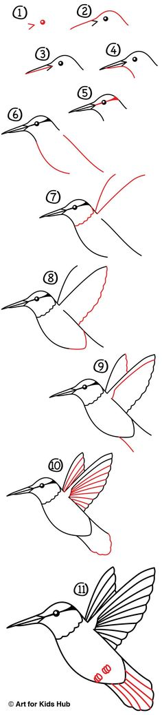Learn how to draw a hummingbird by watching our short video and following along with us!