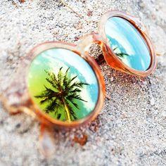 Coconut tree and sun glass