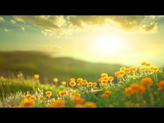 Morning Uplift - YOU ARE AMAZING! - Epic - Uplifting - Healing - YouTube