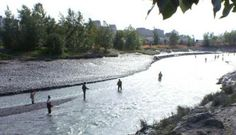 Anglers await salmon coming up Ship Creek in downtown Anchorage. Yep, it's true, fishing in downtown Anchorage