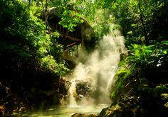 Jaguar Luna Aguas Calientes, Copan Ruinas, Honduras