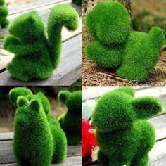 animal shaped bushes - Google Search