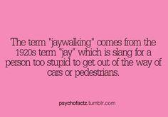 Psycho Factz