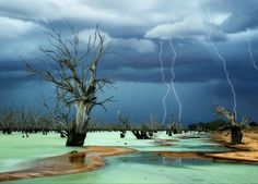 Lightning storm over Lake #Menindee, New South Wales #Australia. Photo by Julie Fletcher. #NatGeo pic.twitter.com/FVELweHzQ7