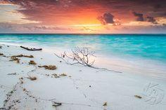 Dawn at Sand Point | Little Cayman  Ph: Mark Graf