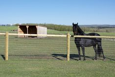 Shop flexible horse fencing is designed specifically for horse and other large animal containment. Diamond mesh provide flexible, cheapest and strongest fencing.