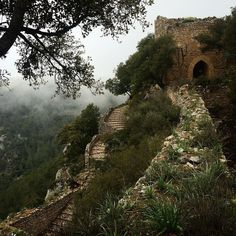 Weekend excursion! Walking 1000 year old hiking trials. So much history in Mallorca.  Castell D'Alaro #history #hiking #mallorca