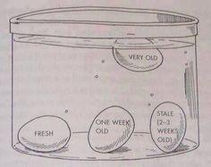 The fresh egg test