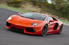 Everyone wants a big orange dog! - Lamborghini Aventador
