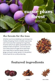 WINTER 2014 - A tartly fruity, lightly spiced blend of plum, apple and ginger.