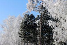 Winter in Russian Navel
