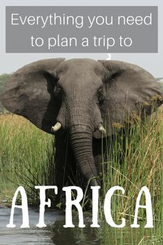 Africa Travel Planning Guide - Helen in Wonderlust Travel Advice, Travel Tips, Travel Ideas, List Of Resources, Top Travel Destinations, African Safari, Travel Light, Beautiful Places To Visit, Travel Abroad
