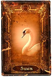The elegant Swan is an ideal symbol of beauty and grace. Its flowing curves and fluid movement give an ethereal air of perfection realized. The Swan's beauty embodies the feminine (Yin) qualities of intuition and sensitivity. But The Swan does not begin life as a creature who appears to be the creation of divine inspiration. Indeed at birth The Swan is an ungainly creature that lacks any indications of the magnificent being it is destined to become.