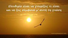 Η ΑΠΟΚΑΛΥΨΗ ΤΟΥ ΕΝΑΤΟΥ ΚΥΜΑΤΟΣ: Ο δρόμος για την ελευθερία είναι η γνώση για το τι... Greek Quotes, Wisdom Quotes, Movie Posters, Movies, Films, Film Poster, Cinema, Movie, Film