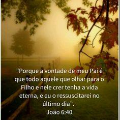 João 6:40