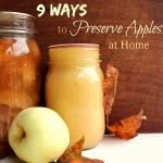 9 Ways to Preserve Apples at Home
