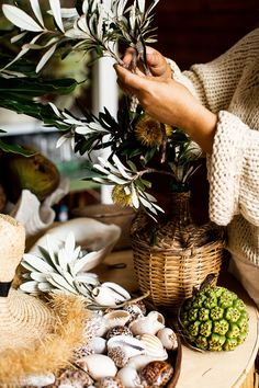 Kara Rosenlund - Weekend in Pictures – Stradbroke Island Escape Kara Rosenlund, Stradbroke Island, Beach Aesthetic, Sunshine State, In This Moment, Table Decorations, House Styles, Queenslander, Beach House