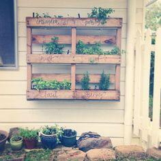 diy pallet herb garden - Garden Care, Garden Design and Gardening Supplies