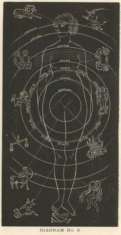 Diagram of the Stars