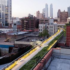 The High Line Park in New York. Built on an abandoned elevated railway line.