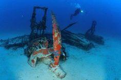 Dive Centre of the Day: DiveMed, Malta #scuba #diving #dive #centre #center #oftheday #DiveMed #Malta #Gozo #Comino