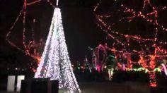 Vlog 14- Zoo Lights! December 23rd, 2013