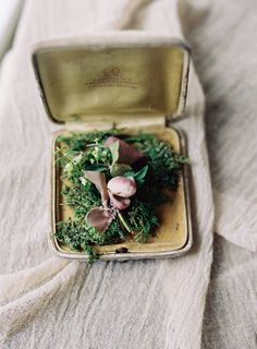 Hannah and Matt's Intimate Garden Wedding at Serenbe by Laura Catherine Photography Wedding Planning Inspiration, Buttonholes, Bridal Accessories, Bridal Style, Garden Wedding, Elegant Wedding, Wedding Details, Wedding Photography, Mori Girl