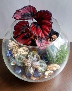 и Garden Terrarium, Planting Succulents, Container Gardening, Snow Globes, Rustic, Plants, Diy, Home Decor, Fairy Gardens