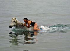 "Greece horseback riding ""Trail of the Gods"""