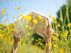 Notre sélection de livres pour l'été