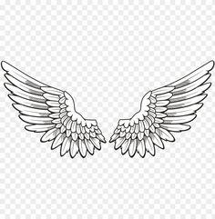 Wing Tattoo Men, Wing Tattoo Designs, Hermes Tattoo, Alas Tattoo, Book Texture, Wings Png, Simple Tattoos For Guys, Tribal Armband, Filigree Tattoo