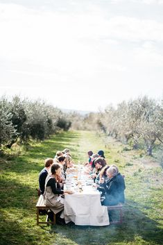 Lunch in the olive grove during the Local is Lovely Pracshop with Sophie Hansen & Stephanie Somebody. Photo by Luisa Brimble