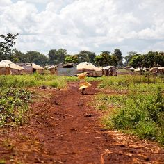 14 fantastiche immagini su nyarugusu refugee camp nel 2017
