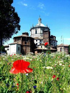 Buongiorno #Milano Eccoci a San Lorenzo Foto di Cosimo Bonarota #milanodavedere Milano da Vedere