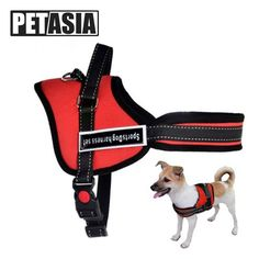 Best Quality Dog Harness and Chain Leash !    $ 20.90 and Spend $80 - Free Shipping !     Tag a friend who would love this!     Active link in BIO     #puppylove #puppy #puppygram #puppyoftheday #puppylife #puppydog #puppypalace #puppyeyes #puppys #puppyface #puppies #puppiesofinstagram #puppiesforall #puppiesofig #puppie #puppiesxdogs #puppiesforsale #frenchbulldog #frenchie #dog #dogsofinstagram #dogs #dogstagram #dogoftheday #doggy #doglife #doglove #dogofinstagram #dogsofinstaworld…