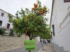 Urlaubserlebnisse vom #Wellness-Bummler in Andalusien. Sommer, Sonne, Sonnenschein