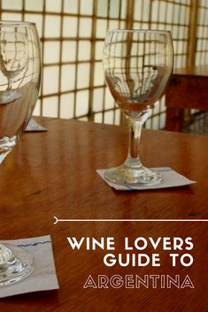 Wine Lover's Guide to Argentina - Travel Guides + Itineraries for Busy Explorers - CantStopDreaming Lamb Dishes, Spicy Dishes, White Wine, Red Wine, Riesling Wine, Argentina Travel, Wine Lover, Sauvignon Blanc, Wine Tasting