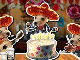 It's your Birthday! Happy Birthday!