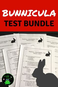 Are you looking for a fun book to excite your students about reading? Bunnicula is a great book for guided reading groups, shared reading, and literacy circles. Monitor their comprehension with these assessments.This is a test bundle of comprehension test Reading Stations, Guided Reading Groups, Teaching Reading, Teaching Resources, Teaching Ideas, Classroom Resources, Teaching Materials, Classroom Ideas, Literacy Circles