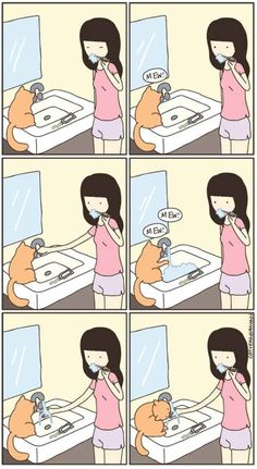 11 Weird Cat Habits We May Never Understand...This is pj