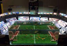 FIFA 2014 Aquarium