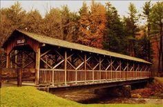 Allegany State Park, NY this would be so cute to walk down this aside for a wedding