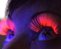UV Eyelashes