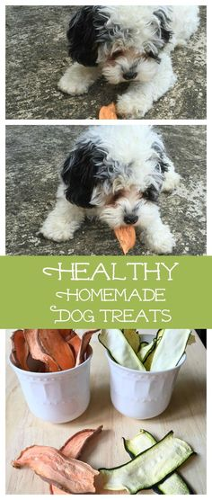 These healthy homemade dog treats are the simplest thing to make and so good for your dog. Plus they are much cheaper than buying them in the store. #healthy #pets #dogtreats