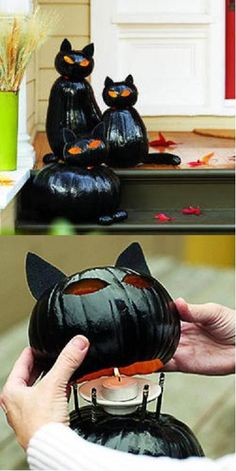 Awesome cat pumpkins!