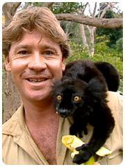 Steve Irwin, Crocodile Hunter Best Tv Shows, New Shows, Reptile Park, Irwin Family, Crocodile Hunter, Bindi Irwin, Steve Irwin, People News, Sad Faces
