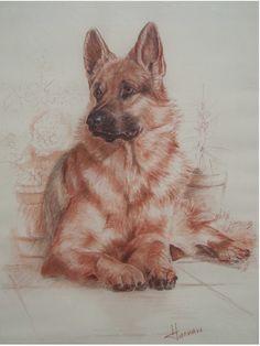 Finalist in Richeson online pastel exhibition 2010; sanguine pastel; 'Piper'. available.