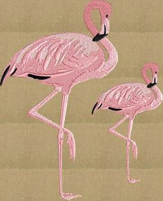 Flamingo Pair - Embroidery DESIGN FILE Instant download animals