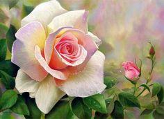 Beautiful Rose Art