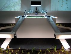 Synthetic biology art